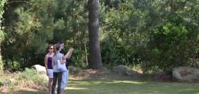 L'animation-jeu La Forêt des Rastelloù